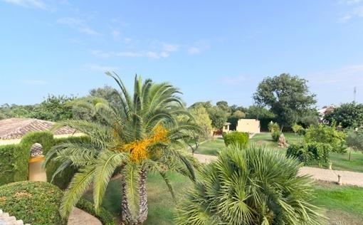 finca-gstehaus-pool-pollensa-a 19