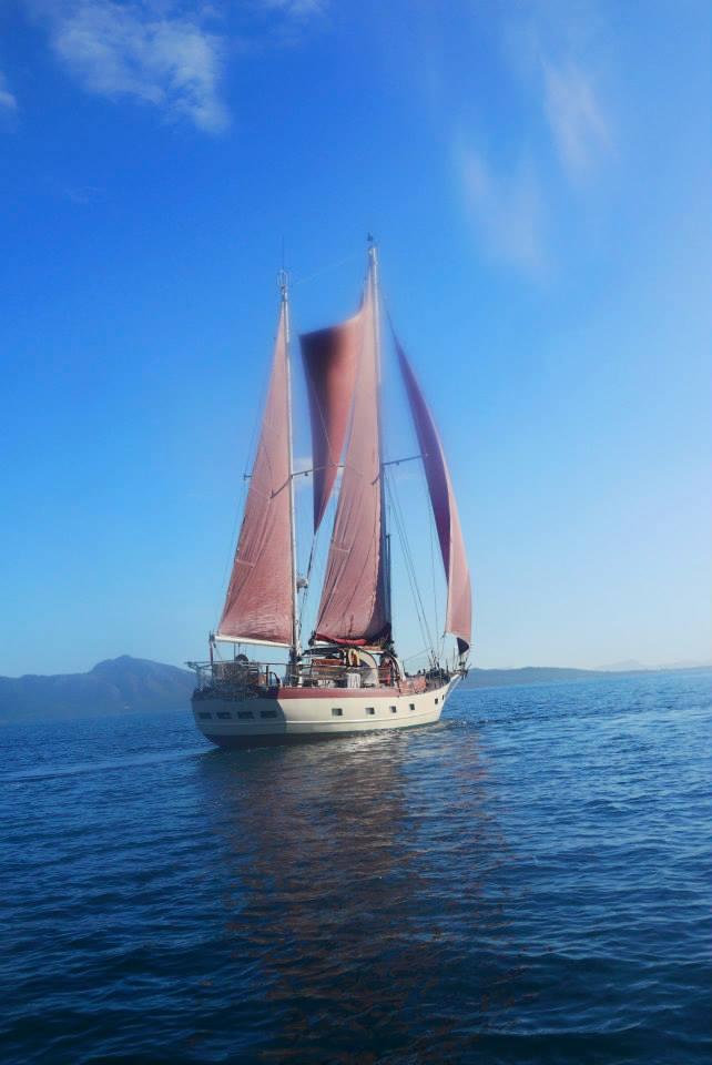 segelboot-charter 17